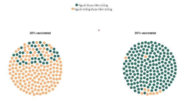 Cách vắc xin có thể tạo ra sự khác biệt trong tác động của biến thể Delta